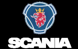Ремонт форсунок и двигателя Scania PDE, HPi