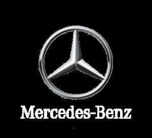 Ремонт форсунок Mercedes Actros, Atego, Axor (PLD секции)